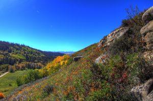 september view westwards